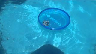 getlinkyoutube.com-Experiment #2: Beyblade battle in a pool in a CHASE frisbee! Rock Leone vs Cyber Pegasus