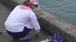 getlinkyoutube.com-次々と魚を釣り上げる釣りガール