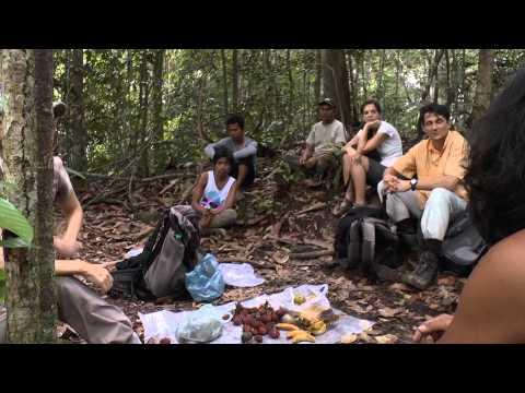Abenteuer Sumatra - von Orang Utans, Elefanten und wilden Wassern (neu)