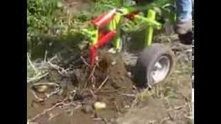 getlinkyoutube.com-MOTOKULTIVATOR GRILLO 107 D - izkop krompirja