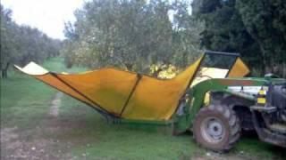 getlinkyoutube.com-Raccolta olive con ombrello rovescio SICMA + cernitrice.