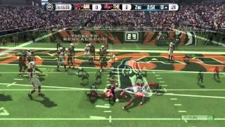 Madden  big hits and Ridiculous Catches
