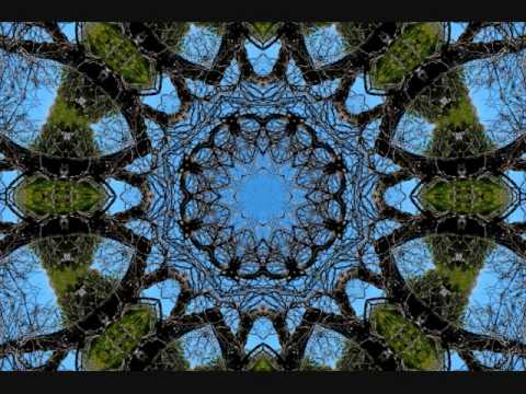 Terence McKenna - What is a Hallucination?