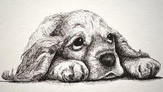getlinkyoutube.com-How to Draw a Sad Puppy