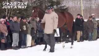getlinkyoutube.com-社台スタリオンパレード2015(Shadai Stallion Station)-全映像