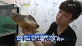 getlinkyoutube.com-[SBS TV 동물농장] 532회 2011년10월2일 일요일_08