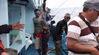 getlinkyoutube.com-มวลมหาประชาเก๋าถ่าน ภาค2  fishing Andaman giant grouper