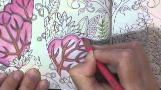 getlinkyoutube.com-Colouring Tutorial: Pencil Blending and Choosing Colours Chat. Enchanted Forest.