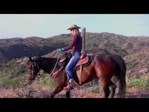 Western Horseback Riding Guides