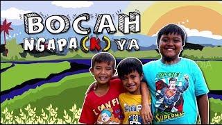 Kucing Ilham Hilang   BOCAH NGAPA(K) YA  (16/02/19)