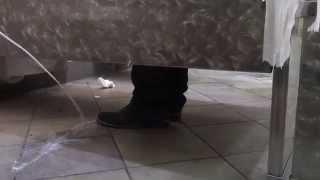 getlinkyoutube.com-jizzing on people shoe prank