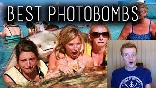 getlinkyoutube.com-The Funniest Photobombs