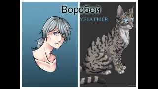"""getlinkyoutube.com-""""Коты - Воители"""" - в облике людей!"""