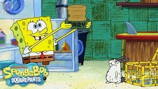 SpongeBob Adopts a Sea Bunny! 🐰 EXCLUSIVE Sneak Peek | SpongeBob SquarePants | Nick width=