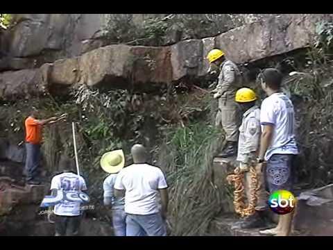 Anaconda de 6 metros e encontrado nas cachoeiras de Barra do Garças MT