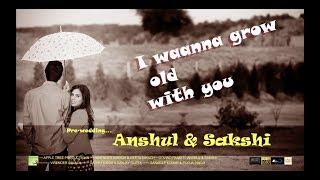 Pre- Wedding || I waana grow old with you || Anshul & Sakshi || Apple Tree Delhi/ Productions