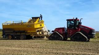 getlinkyoutube.com-2015 Beet Harvest