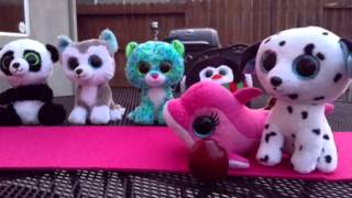 getlinkyoutube.com-Beanie Boo Vs LPS Fashion Show
