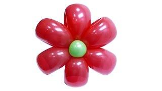 getlinkyoutube.com-Изготовление цветка ромашки из воздушных шаров - инструкция