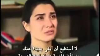 getlinkyoutube.com-ايليف & عمر انت اية نانسي عجرم