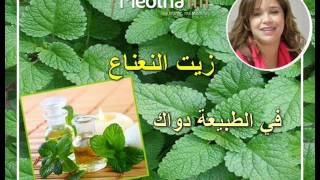getlinkyoutube.com-استعمالات زيت النعناع التجميلية و العلاجة مع الدكتور فؤاد كمال 24/11/2016