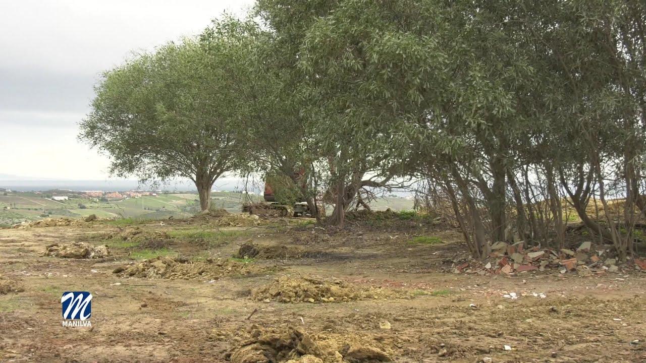 El paraje natural El Calvario contará con un nuevo bosque