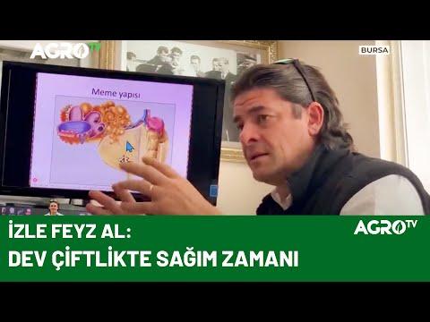 İneklerde Doğru Sağım Yönetimi / AGRO TV