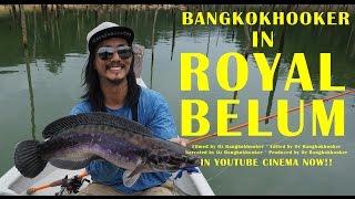 getlinkyoutube.com-Snakehead topwater sight-casting: Bangkokhooker in Royal Belum