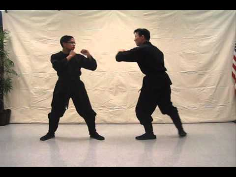 Ninjutsu 忍術 tutorial video (Insert punch) - video #197