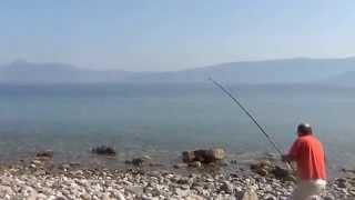 getlinkyoutube.com-ψαρεμα συναγριδας 8kg by Πασουμιας