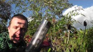 getlinkyoutube.com-How to attract goldfinches. Alex Sally nyjer feeder top tip (wales england) hd
