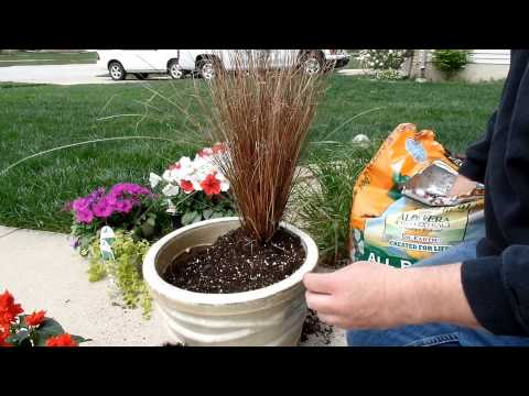 Container Gardening Idea | Fun With Flowers