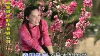 getlinkyoutube.com-小鳳鳳- 春花美丽