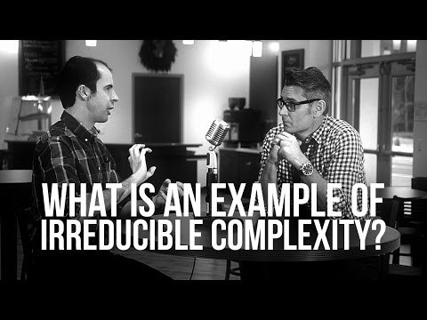 927. What Is An Example Of Irreducible Complexity?