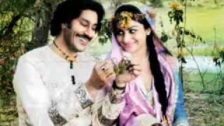 Ek Tu Hi Gawah Saada - song - heer Ranjha -punjabi new song.flv