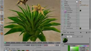 getlinkyoutube.com-Cinema 4D Example 01 - Canyon and Plants