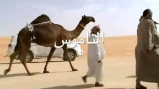 العشوا ملك راشد سالم بن عاضة البقمي