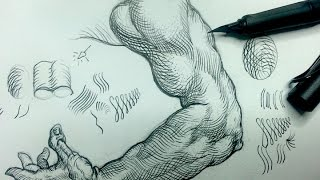 getlinkyoutube.com-Pen & Ink Drawing Tips | How add crosshatching to an arm