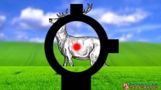 getlinkyoutube.com-Airgun Academy Episode 29 - Red Dot sights