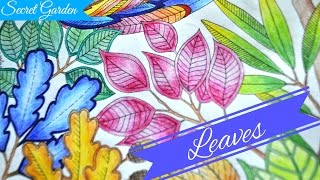getlinkyoutube.com-Secret Garden Colouring Book | Leaves | Jardim Secreto | Чарівний сад