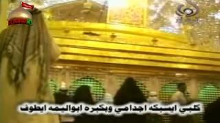 getlinkyoutube.com-يالقاصد قبر حسين - ملا باسم الكربلائي