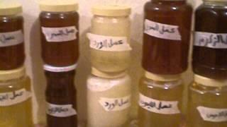 getlinkyoutube.com-فيديو ل غداء ملكة النحل و حبوب اللقاح  وعسل السدر الليمون والزكوم والورد والزريكا