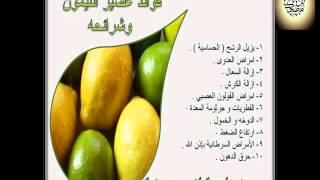 getlinkyoutube.com-فاكهة الليمون تعالج أكثر من عشرين مرض بأمر الله تعالى للدكتور محمد عمر ابو راشد