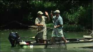 getlinkyoutube.com-Wild SideTV-Collins River Muskie