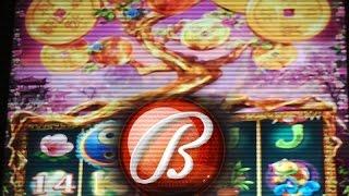 getlinkyoutube.com-LUCKY TREE Slot Machine ~ Pick 'em Bonus Bally