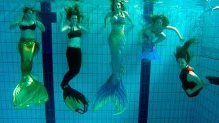 getlinkyoutube.com-Seven Mermaids Meet | Mermaid Tails in Pool | Stella the Siren
