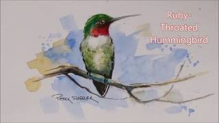 How to paint a Ruby-Throated Hummingbird in Watercolour. Easy to follow and fun to paint.