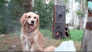 getlinkyoutube.com-Burn The Carillon 400 Speakers
