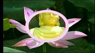 getlinkyoutube.com-Tiên Thiên Khí Công Thực Hành