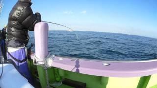 getlinkyoutube.com-東京湾タチウオ釣り@2014年11月30日 Yokosuka: Tokyo Bay Fishing